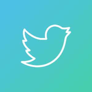 Twitter Bandeja de Proteção